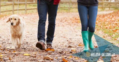 Afbeelding van het bericht 'Met je familie moet je wandelen, niet handelen, toch?'